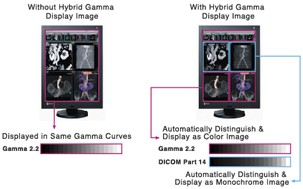 Eizo Radiforce RX240 hybrid gamma function
